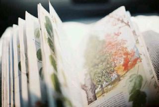 重庆市开州区职业教育中心五年制大专2020招生简章