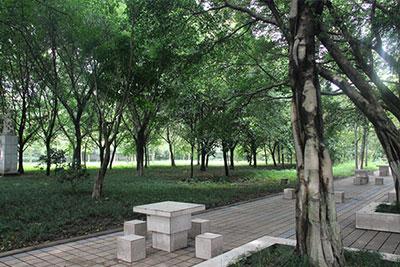 重庆知行卫生学校校园一角