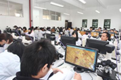 重庆医科大学应用统计学