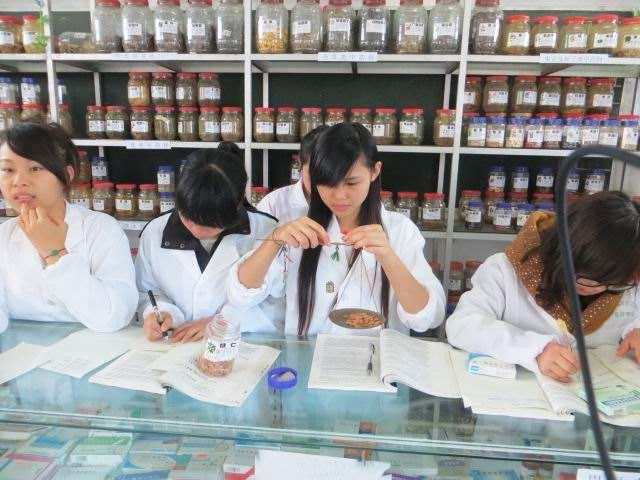 药剂专业药物实践课