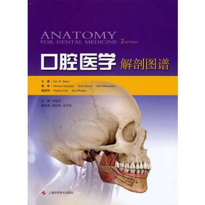 重庆医科大学(口腔医学专业)招生分数线