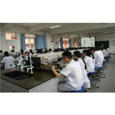 重庆医科大学(医学检验技术专业)招生分数线